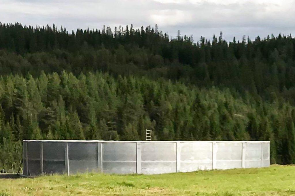 Agromiljø Kum